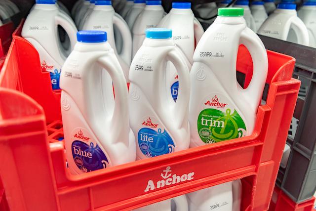 ニュージーランド 牛乳