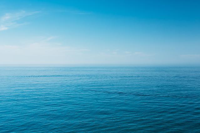 飛鳥Ⅱイメージ海