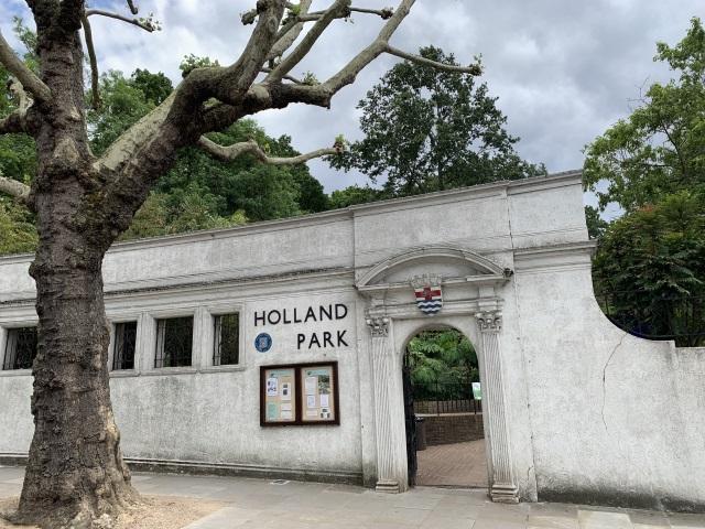ホランドパークの孔雀