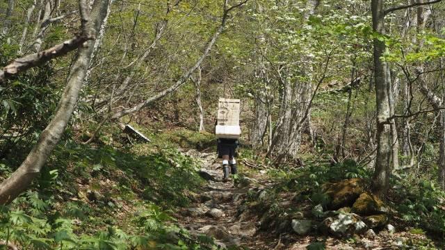 山道の歩荷さん