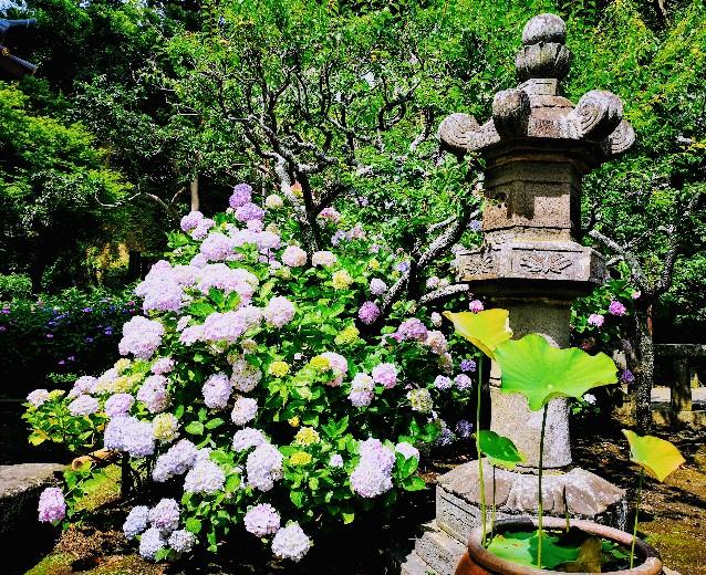 英勝寺灯籠