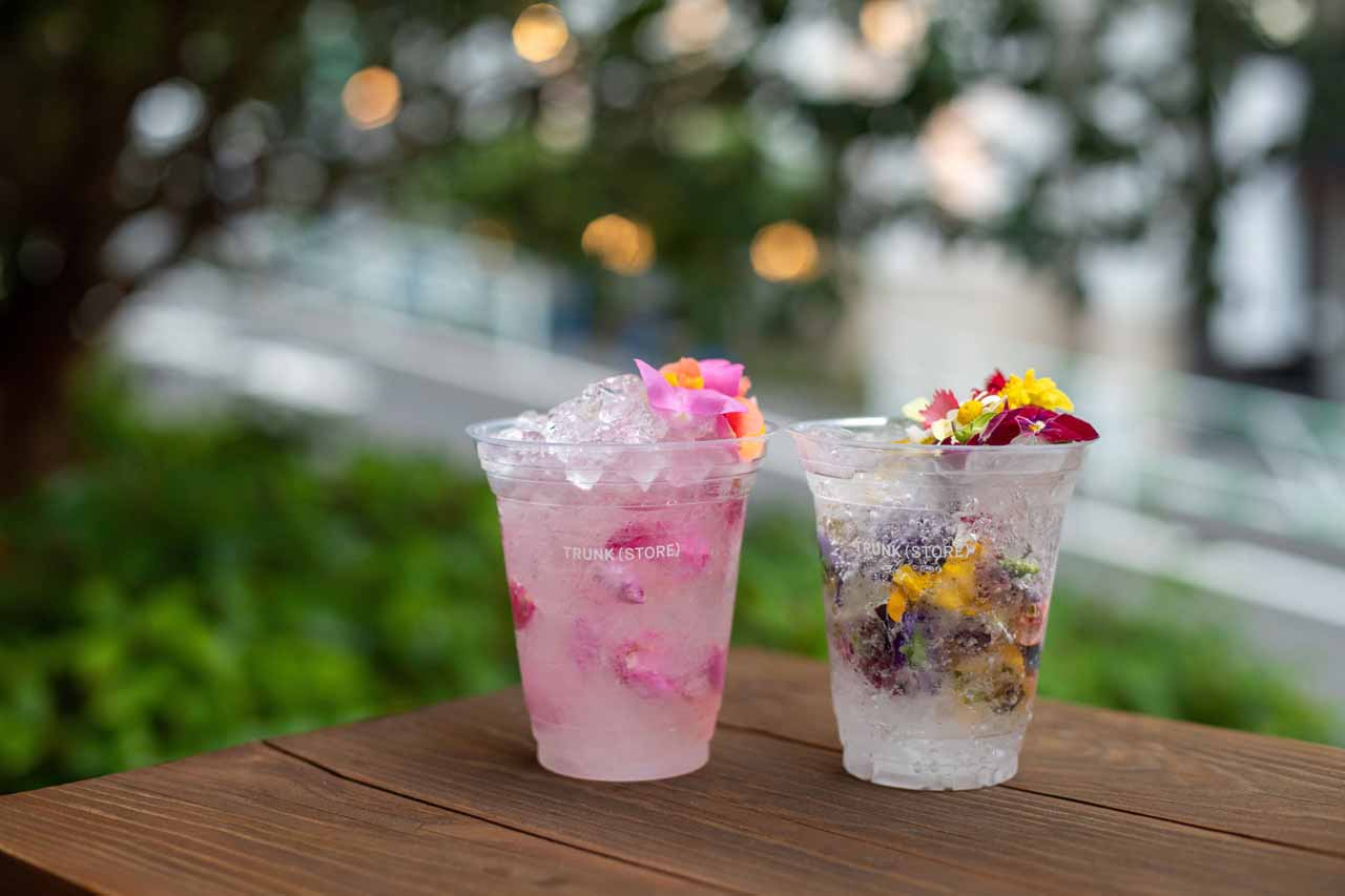 Edible Flower Drink
