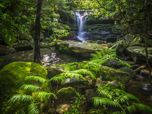 沖縄 クーラの滝