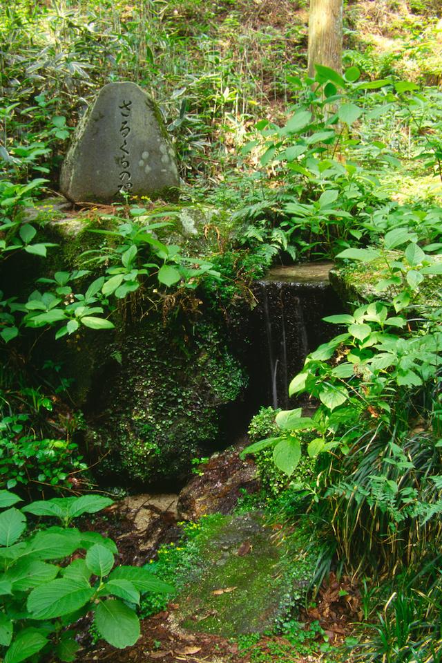 猿倉の泉(名水)