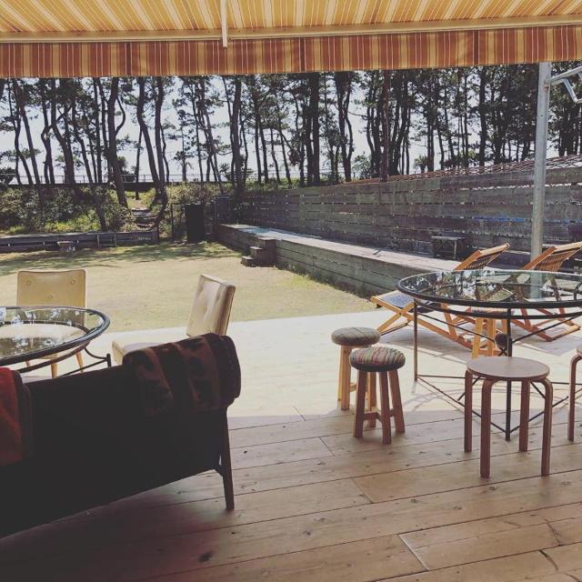 ダチョウ牧場の中のカフェ つなぐ  茶氷