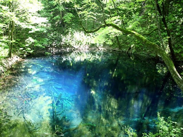 絶景と秘湯に出会う山旅(4)世界遺産 白神山地と不老ふ死温泉