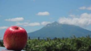 りんごUPと岩木山