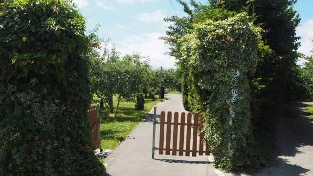 リンゴ園正門