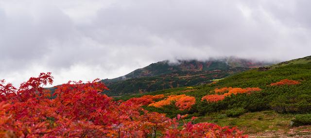 【全国紅葉の絶景】9月に始まる日本一早い紅葉!北海道、大雪山国立公園・層雲峡