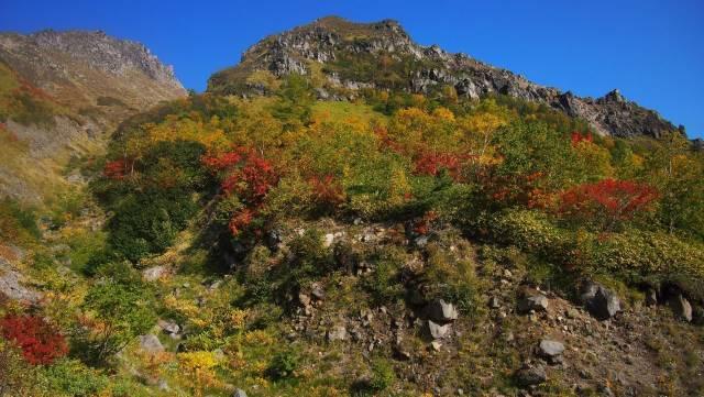 山全体が紅葉に
