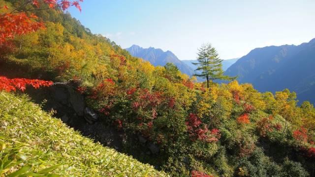 紅葉と山並み