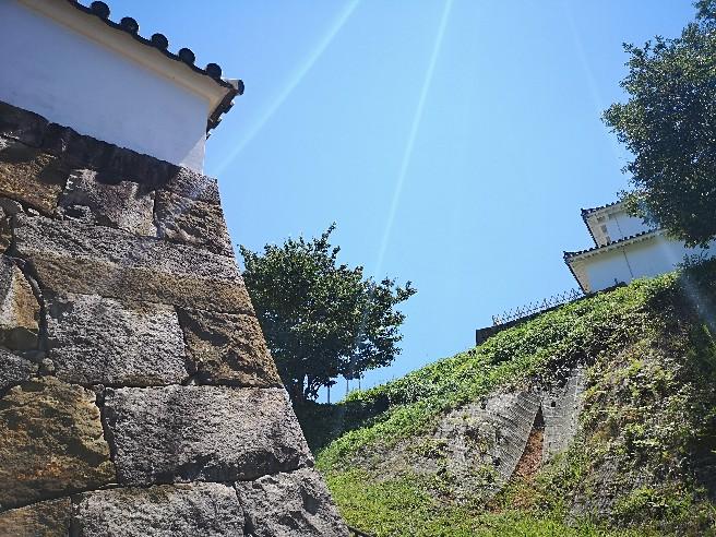 富岡城石垣