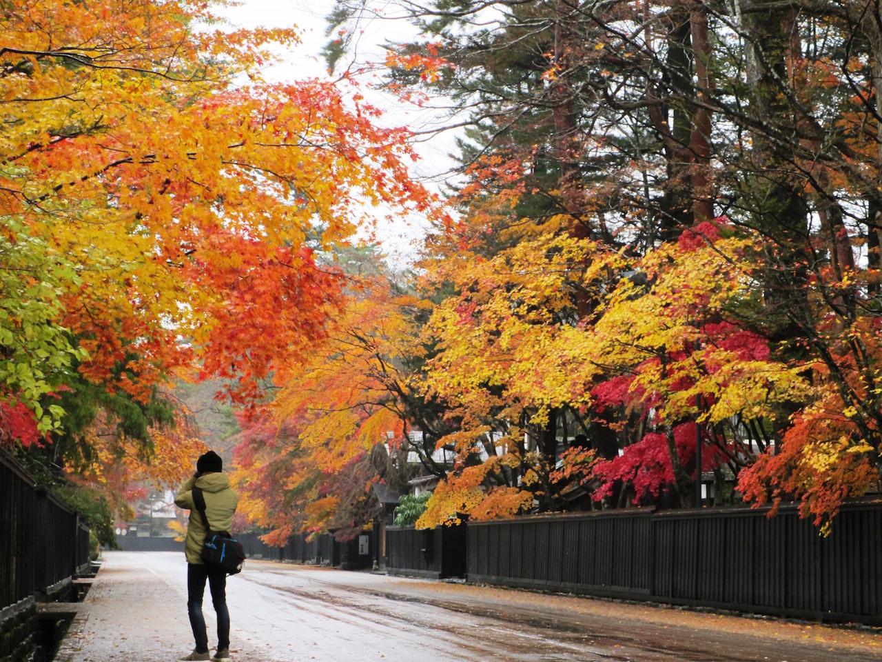 【全国紅葉の絶景】秋田美人のように美しい、秋田県の紅葉人気スポット