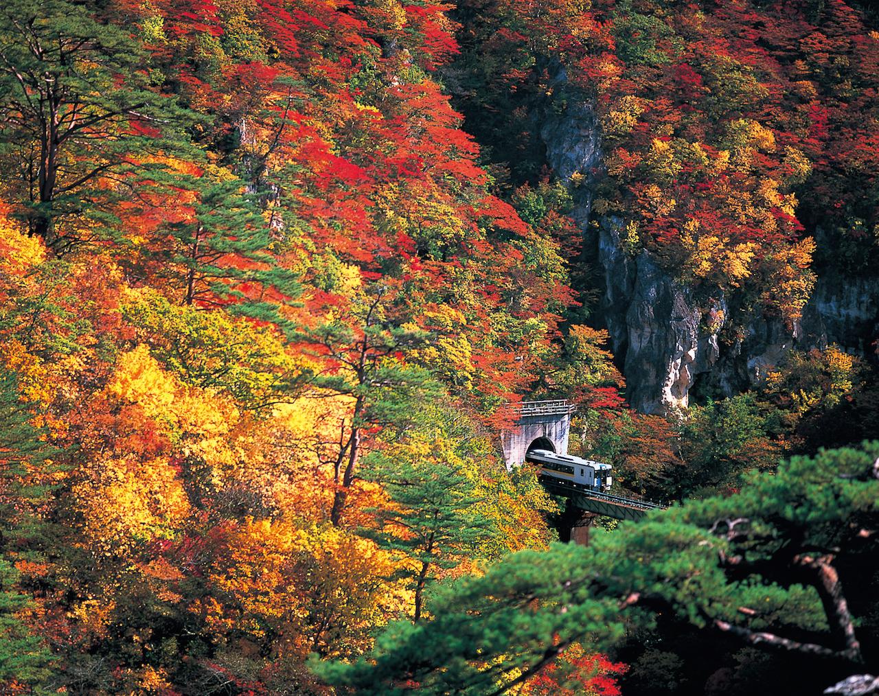 鳴子峡と列車