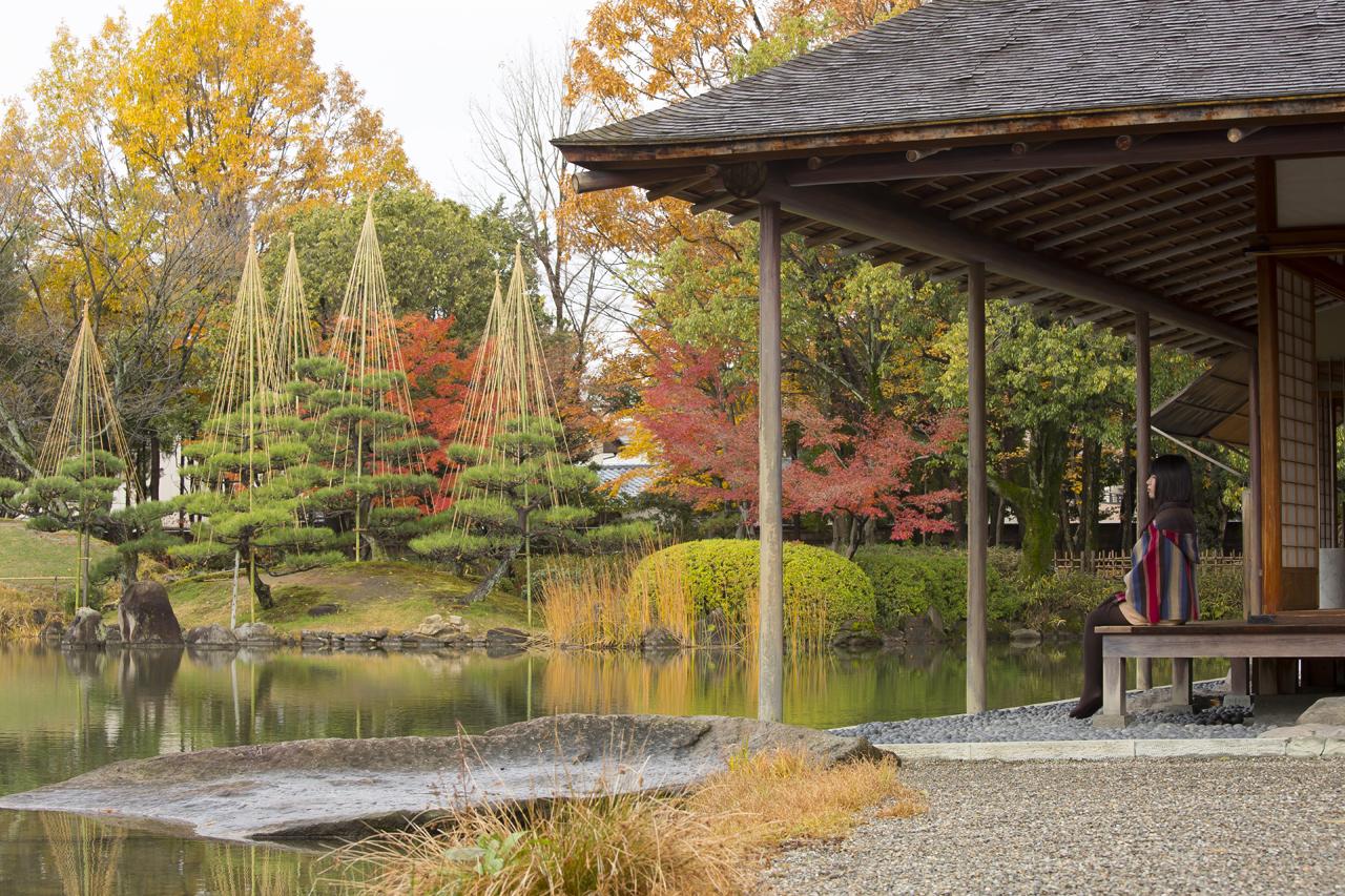 【全国紅葉の絶景】ゆったりと穏やかに見る、福井県の紅葉人気スポット