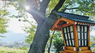 新倉山浅間公園の朝日