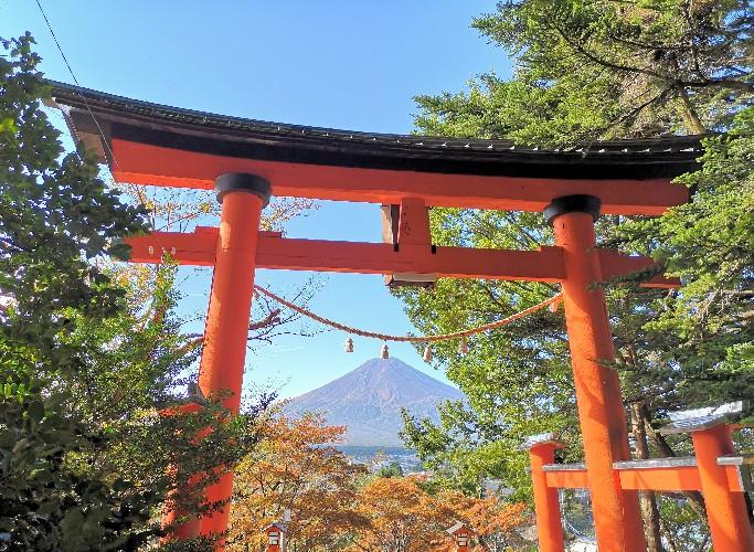 新倉山浅間公園鳥居と富士山