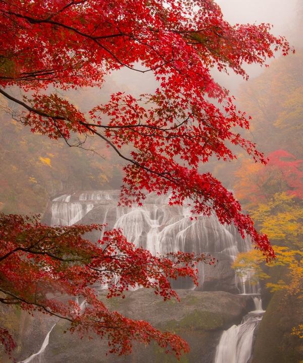 霧の中の袋田の滝