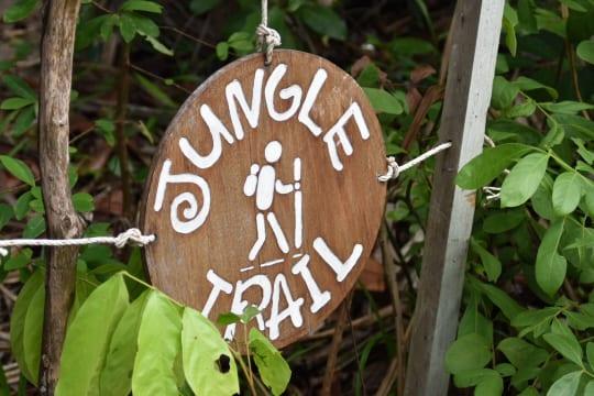 ジャングル・トレイルのスタート地点