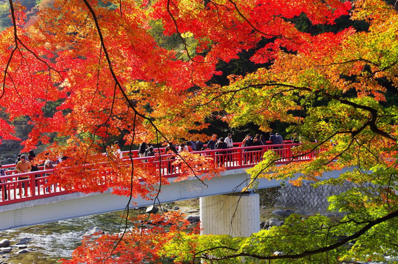 香嵐渓 待月橋