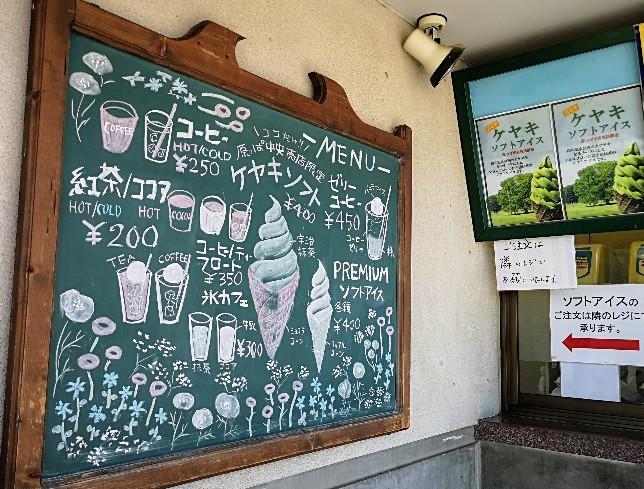 国営昭和記念公園ケヤキソフトクリーム