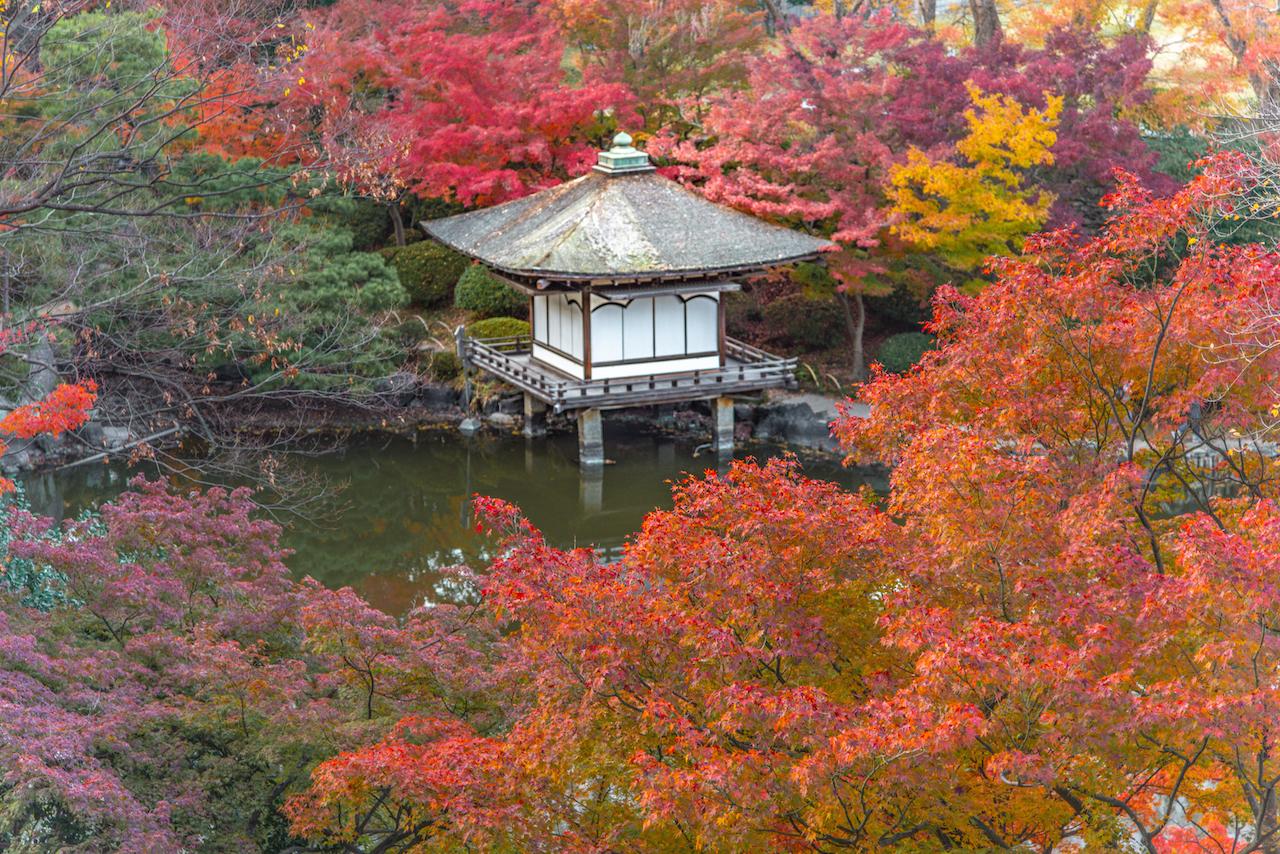 和歌山城紅葉渓庭園