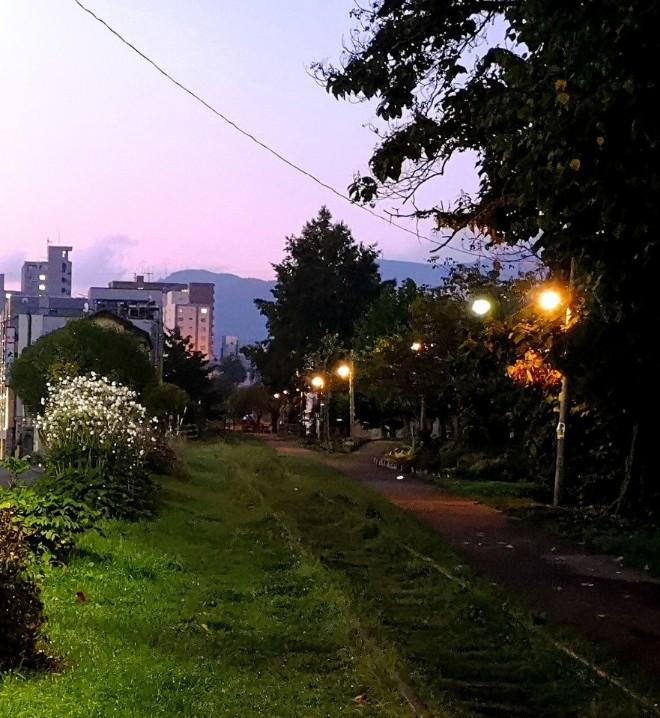 旧国鉄線路の早朝
