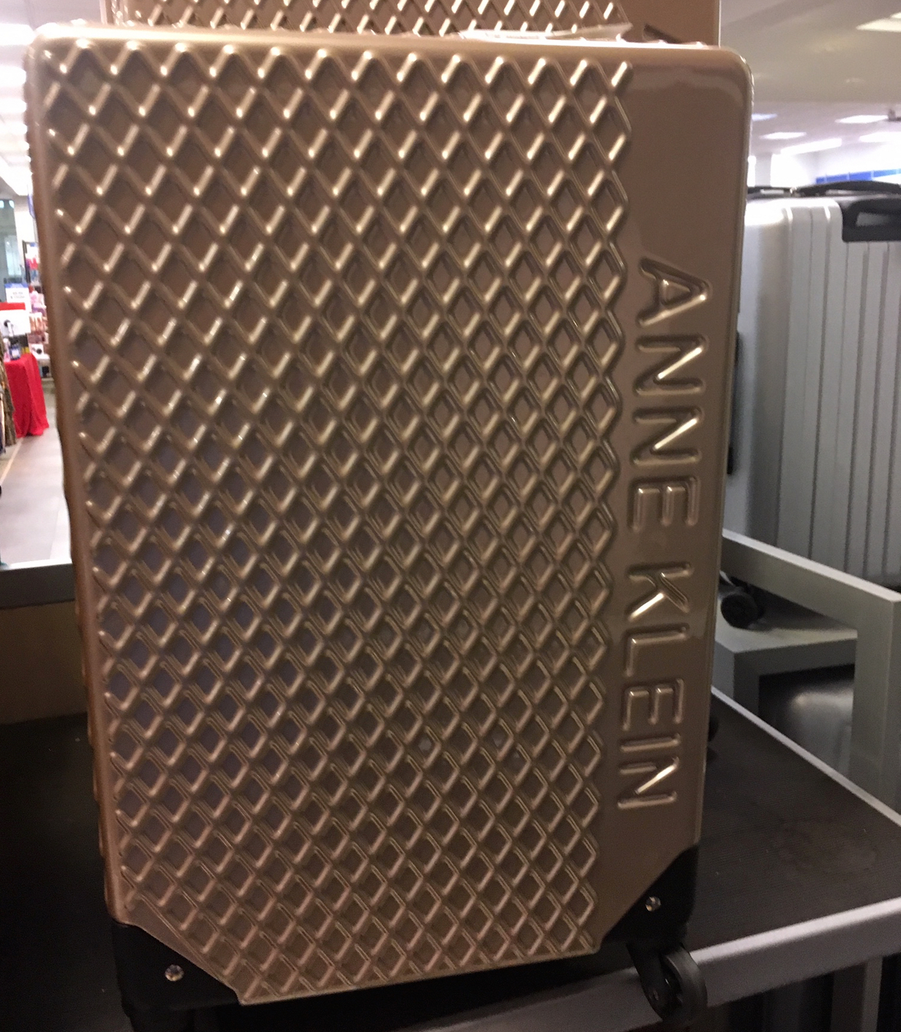 アン・クライン スーツケース2