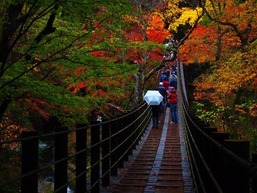 汐見滝吊り橋(C)Zekkei×IBARAKI2017詩歩賞