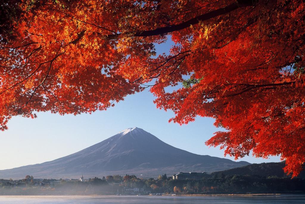 紅葉と富士山の競演が楽しめる河口湖