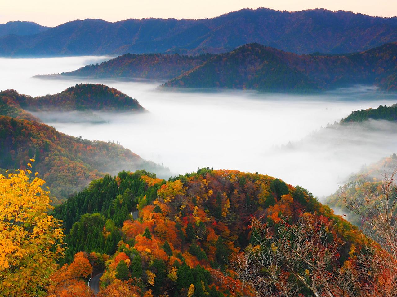 小入谷 滋賀県