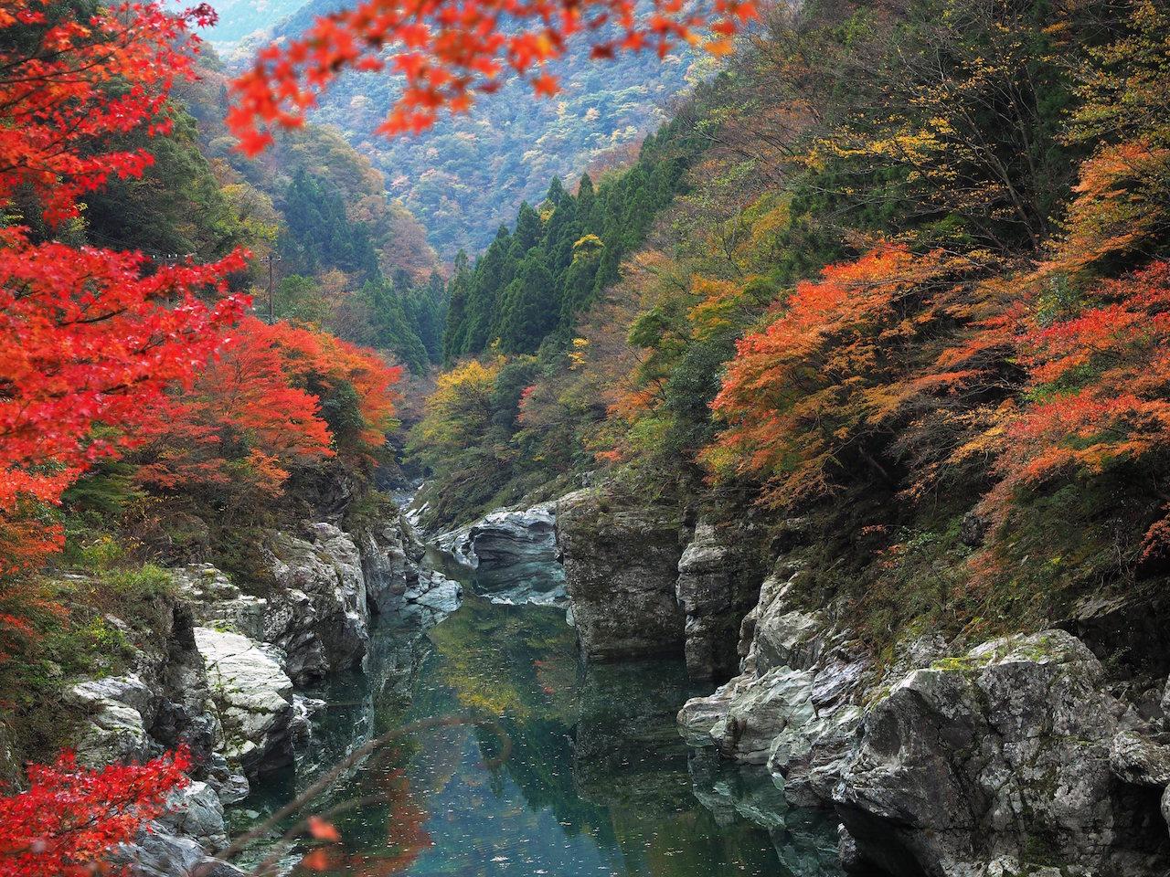 秋色の祖谷渓