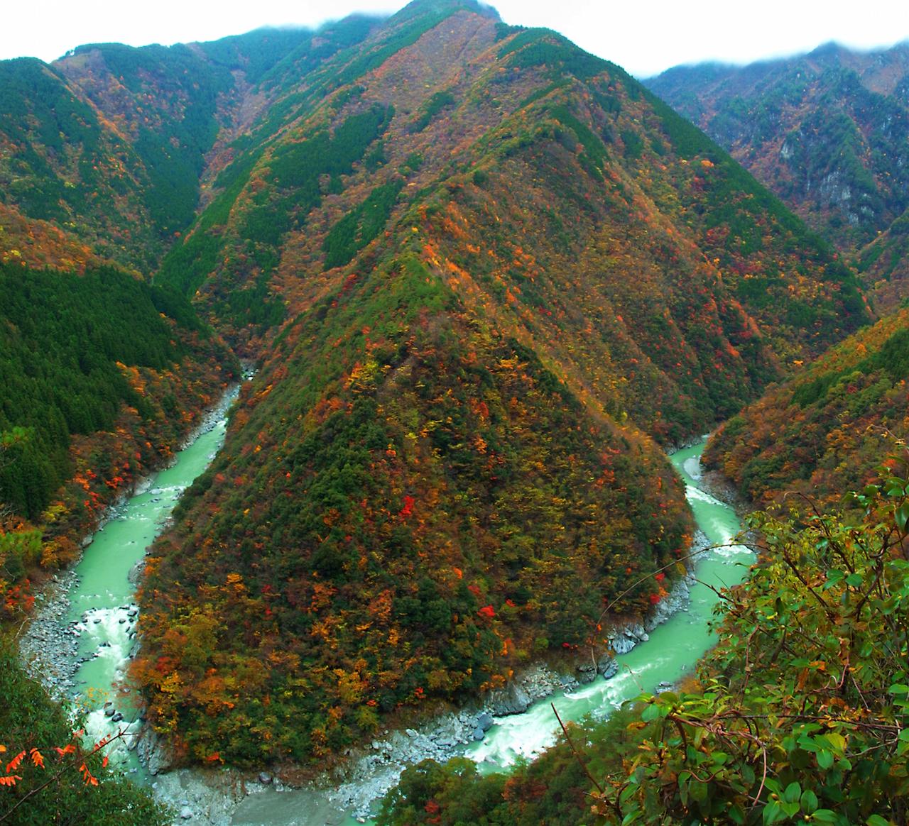 祖谷渓 写真提供:徳島県・(一財)徳島県観光協会