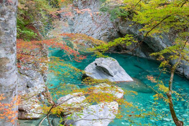 【全国紅葉の絶景】エメラルドグリーンの清流と紅葉のコントラスト、愛媛県の紅葉人気スポット