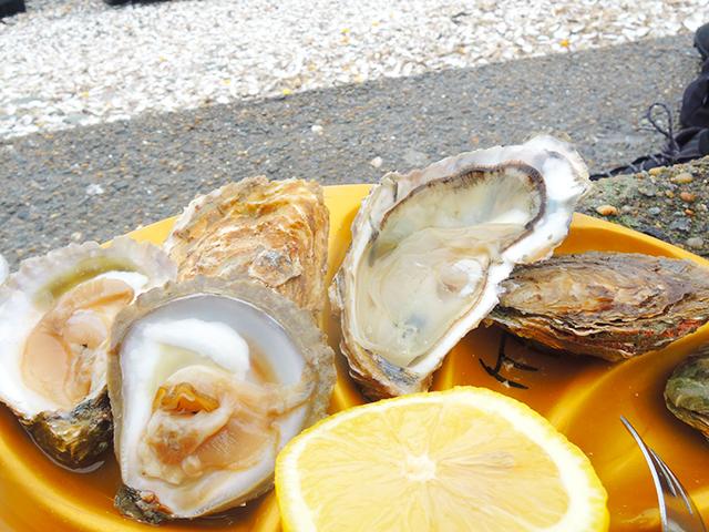 Marché aux Huîtres de Cancale カンカル牡蠣市場