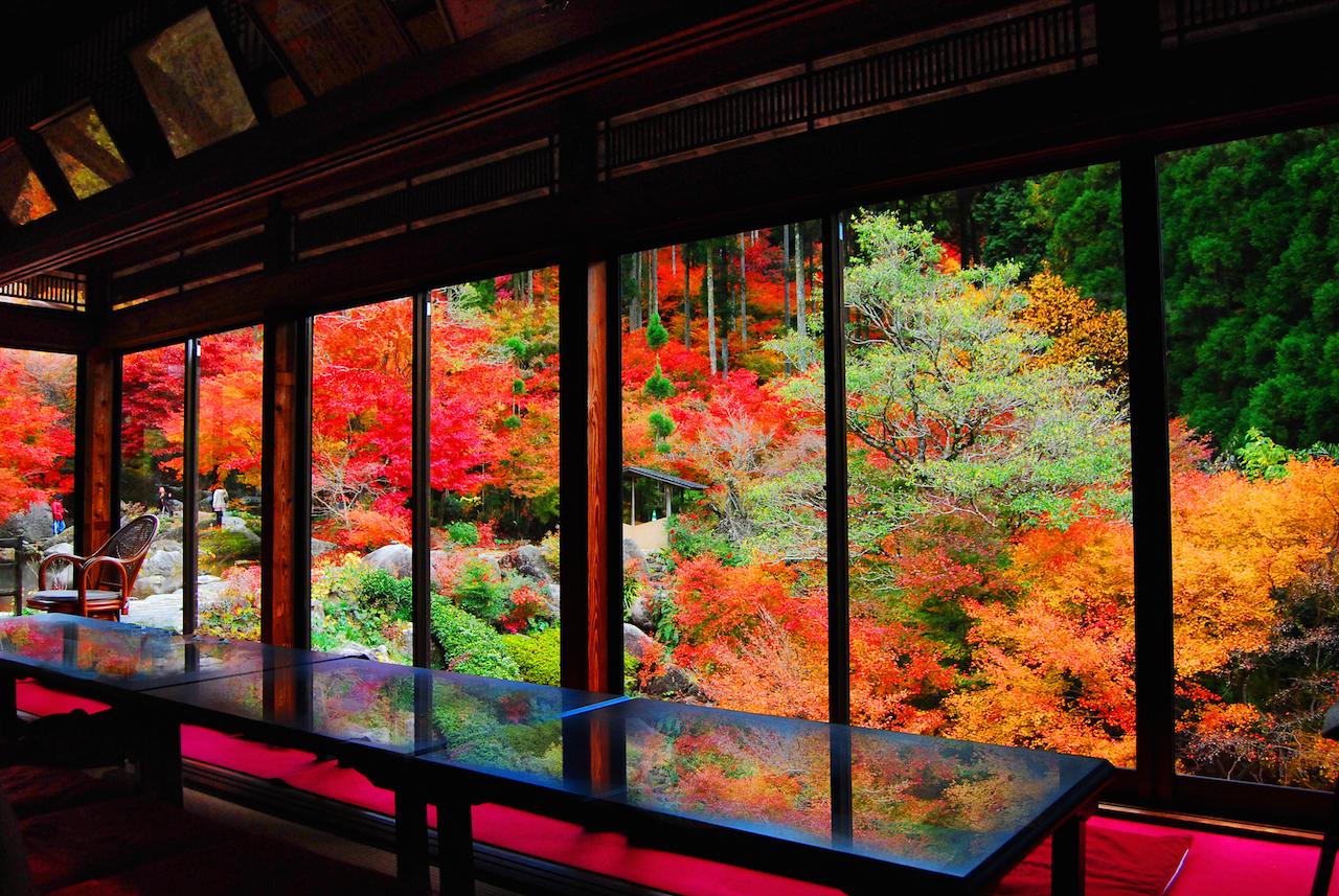 佐賀県 環境芸術の森