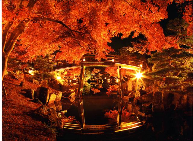彦根城「錦秋の玄宮園ライトアップ」
