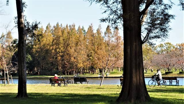 公園で憩う人々
