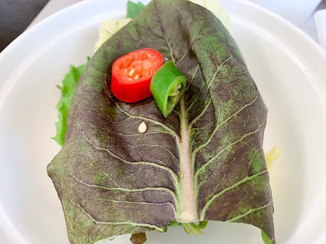 様々な種類の葉野菜たち