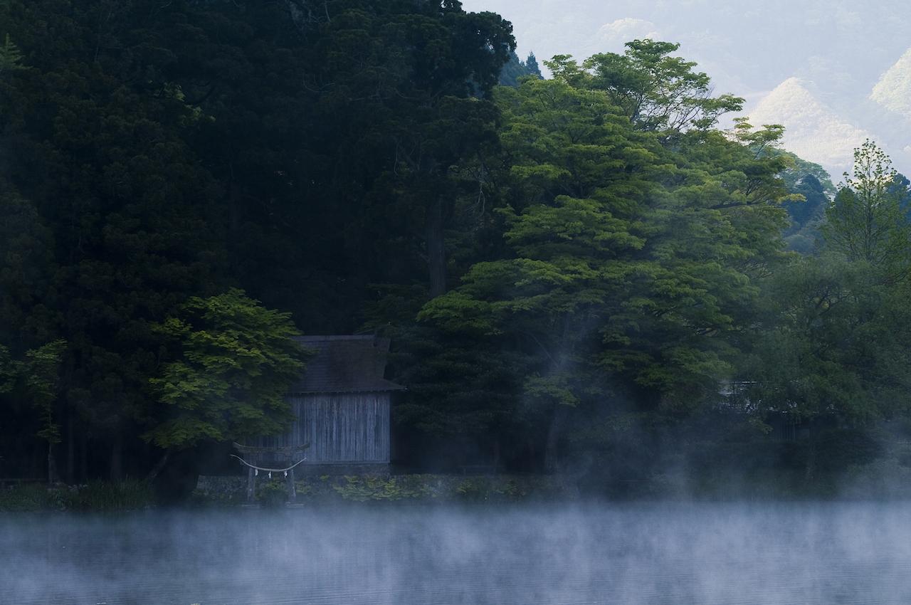 金鱗湖 朝霧