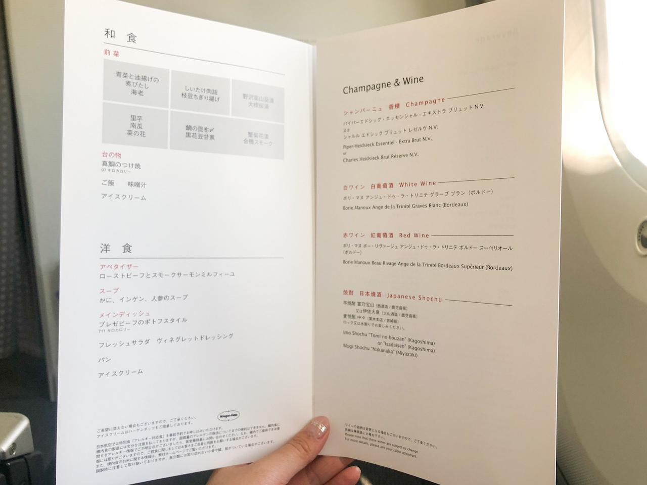 JAL飛行機機内6