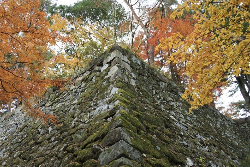丹波亀山城 石垣