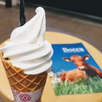 Bocca大通BISSE店 ソフトクリーム