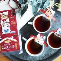 キャットカフェ