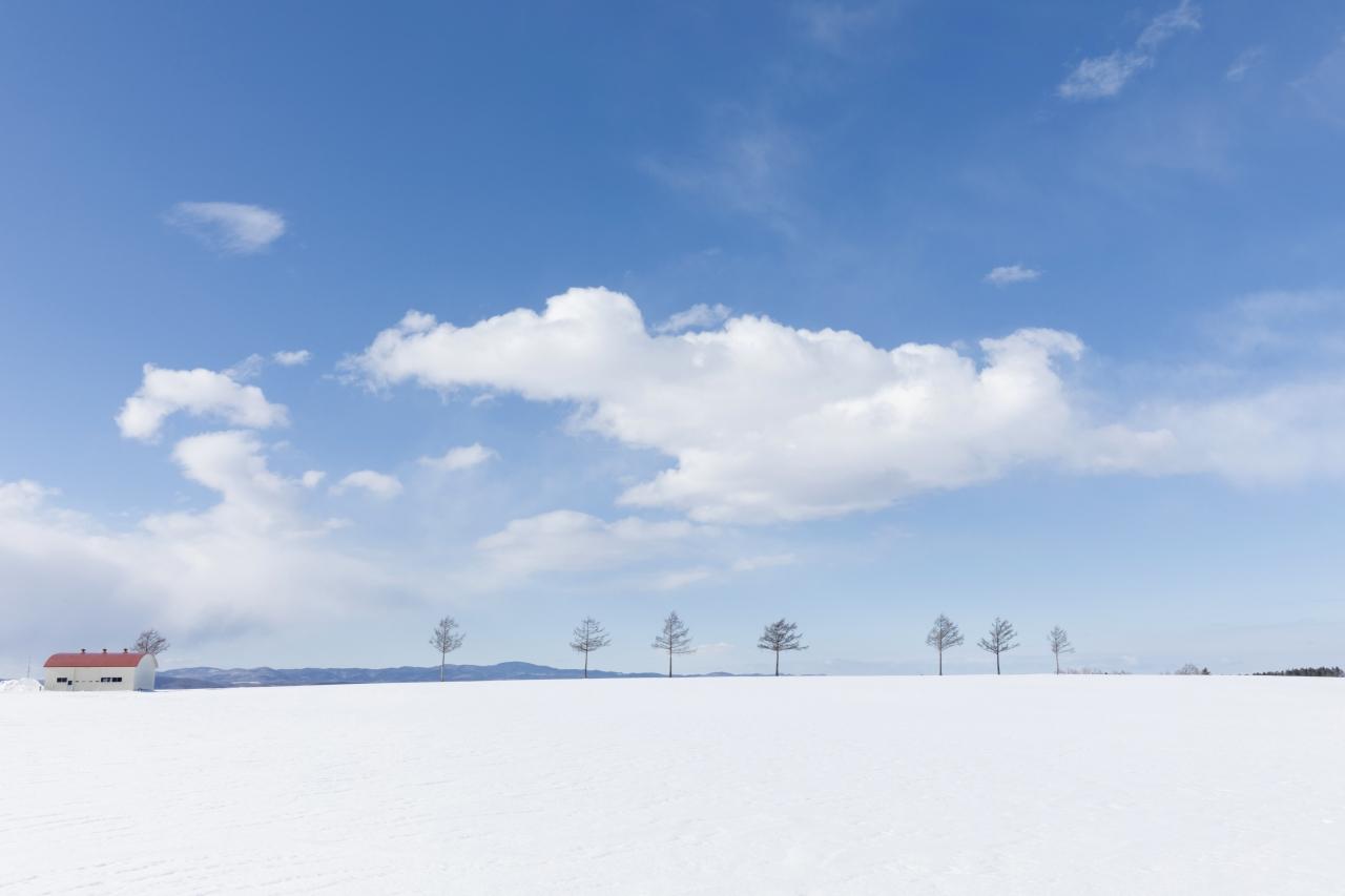 北海道 メルヘンの丘