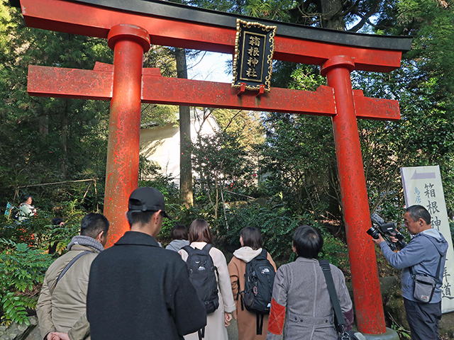 箱根神社の鳥居をくぐるツアー参加者たち
