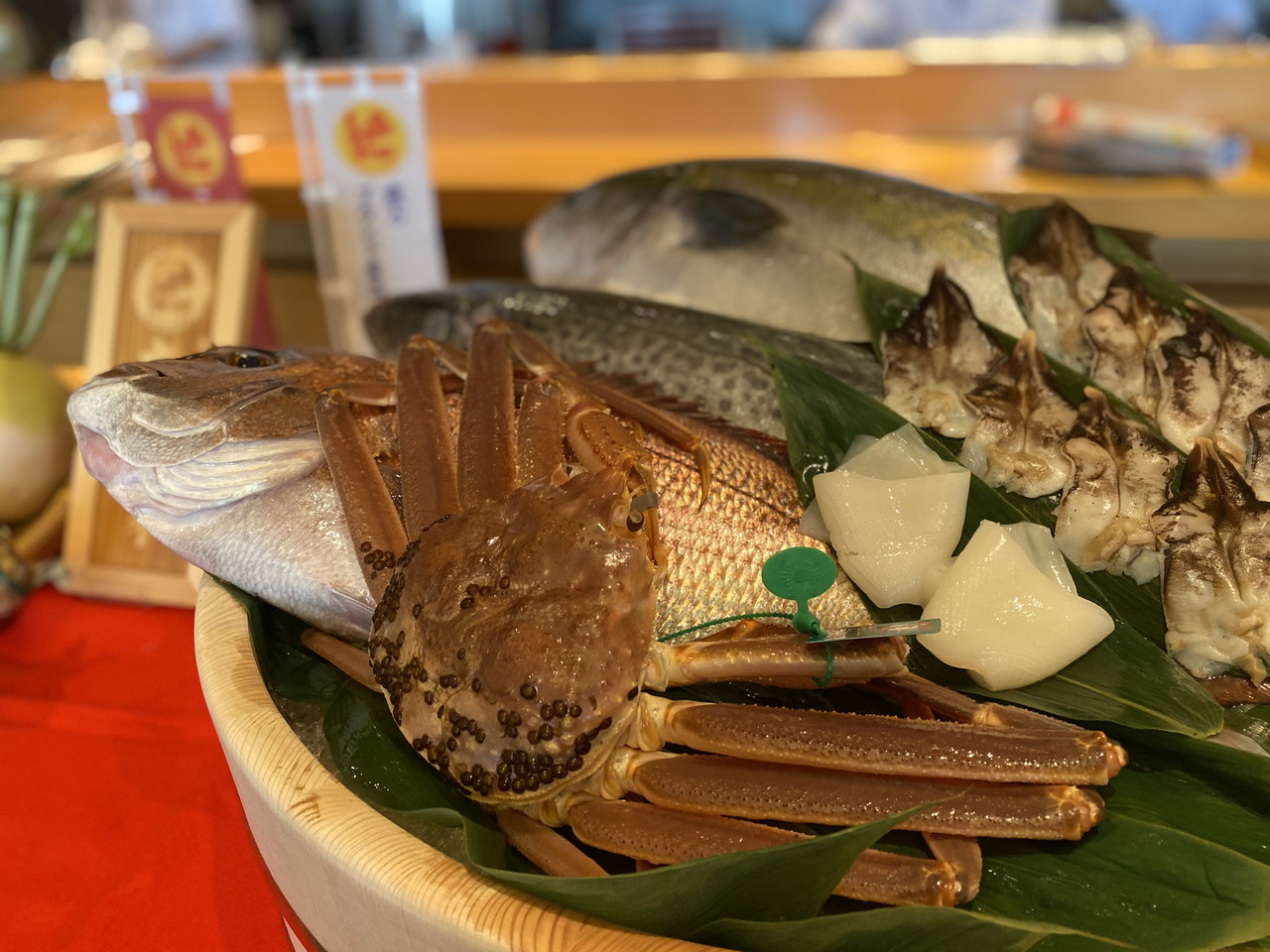 京都(魚)