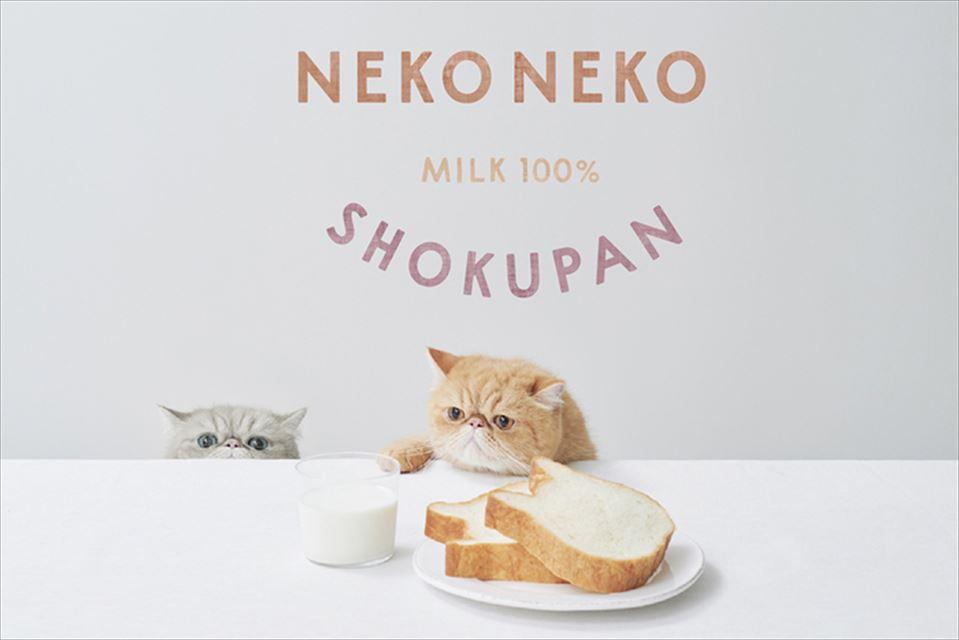 にゃんとも美味しい「ねこねこ食パン」大阪・イオンモール四條畷にオープン