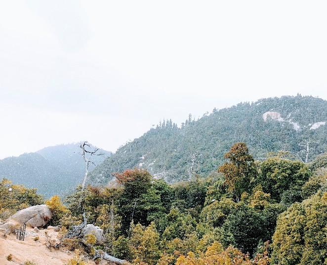 宮島 獅子岩谷からの眺め