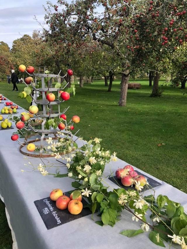 収穫したりんごのパーティー